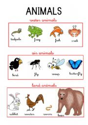 Water and land animals list