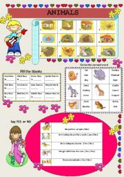 English Worksheets: MORE ABOUT ANIMALS