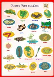 English Worksheet: Fragrant Herbs and Spices **fully editable