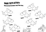 English Worksheets: Shark teeth activity