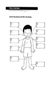 English Worksheets: part of the body