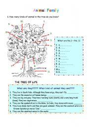 English Worksheets: Animal Tree