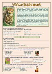 English Worksheets: Cheetah