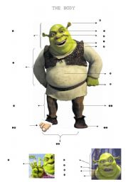 English Worksheet: The Body (Shrek)