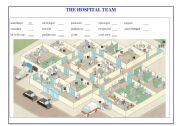 English Worksheet: Hospital team