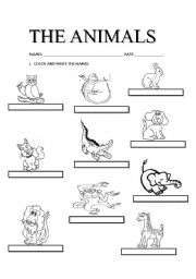 English worksheet: THE ANIMALS