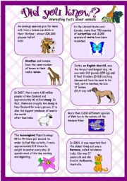 English Worksheets: animal facts - did you know? (re-uploaded)