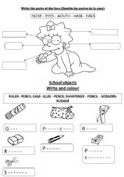 English Worksheets: PARTS OF THE FACE AND SCHOOL OBJECTS