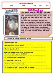 English Worksheets: dodo