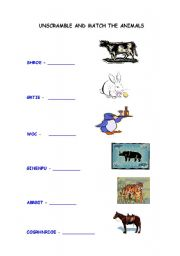 English Worksheets: EXERCISES ABOUT ANIMALS