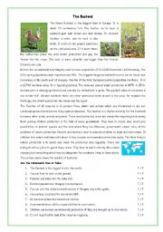 English Worksheets: protected birds