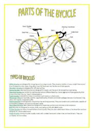 English Worksheets: PARTS OF THE BYCICLE