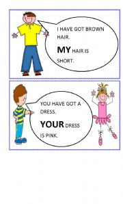 possessive adjectives flashcards 1