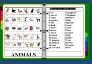 English Worksheet: Animals /matching