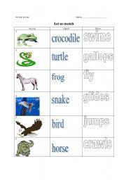 English Worksheets: Animals and movement