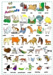 English Worksheets: Find 40 Farm Animals