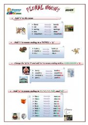 English Worksheets: Plural Nouns Part 1