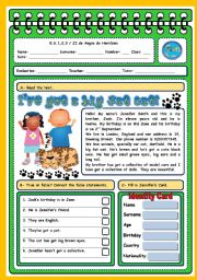 English Worksheet: I�VE GOT A BIG FAT CAT - TEST ABOUT PETS AND COLLECTIONS (4 PAGES)