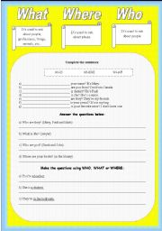 English Worksheets: What - Where - Who