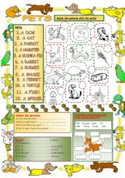 English Worksheets: Elementary Vocabulary Series4 - Pets