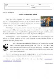 English Worksheet: Tigers - endangered species