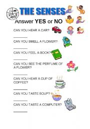 English Worksheets: ANSWER YES OR NO