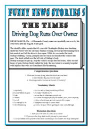 English Worksheets: Funny News 5: Dog Drives Over Owner!