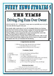 English Worksheet: Funny News 5: Dog Drives Over Owner!