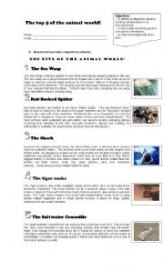 English Worksheets: top 8 animals