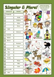 English Worksheet: SINGULAR & PLURAL
