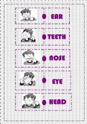 English Worksheets: BODY PARTS DOMINO