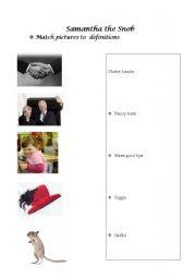 English Worksheets: SAMANTHA THE Snob