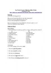 English Worksheets: Video Worksheet: Sea World Trainer Killed by Killer Whale