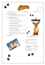 English Worksheets: MOVIE:Beverly Hills chihuahua