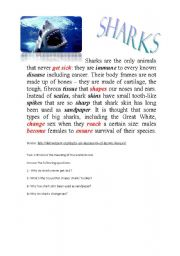 English Worksheets: Sharks
