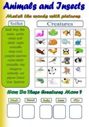 English Worksheet: Animals and Insects ( 2 activities)