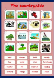 English Worksheet: Countryside - matching
