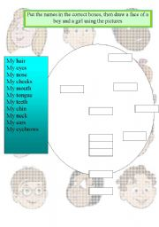 English Worksheets: drow a face