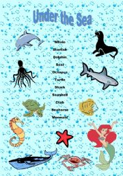 English Worksheet: Under The Sea