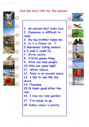 English Worksheets: find the title for the picture