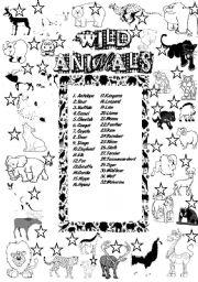 English Worksheets: ANIMALS: WILD ANIMALS