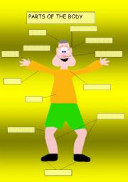 English Worksheets: Parts Of the Body for all Age