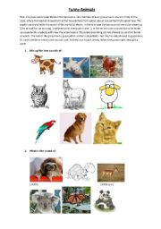 English Worksheets: Funny Animals!