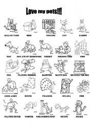 English Worksheets: Love my pets!!!