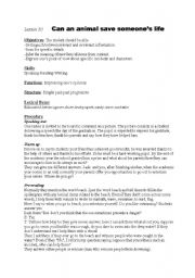 English Worksheet: lesson plan for lesson 30 1st year tunisian pupils