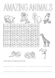 English Worksheets: AMAZING ANIMALS