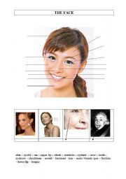 English Worksheets: face vocabulary