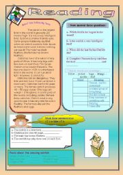 English Worksheets: The ostrich