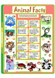 English Worksheet: ANIMAL FACTS (4)