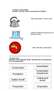 English Worksheet: Science, the Water, States, cycle, cause and effect